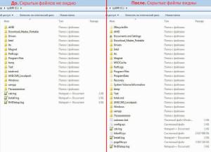 Результат отображения скрытых файлов и папок