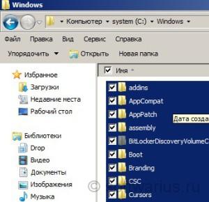 Пример выделения всех файлов для Windows 7 флажком